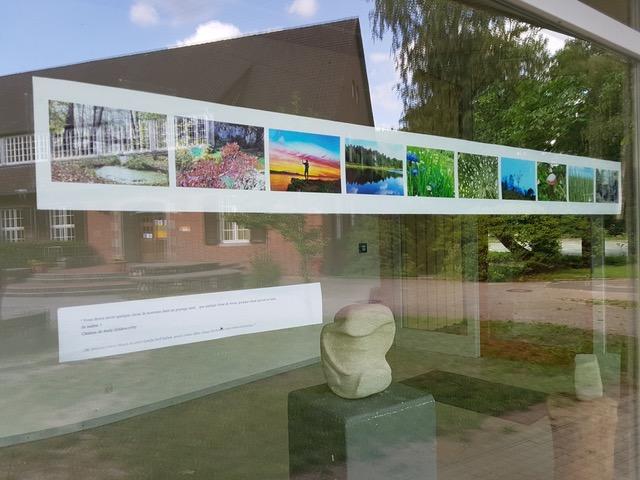 Projet photographique, Peintures et Sculptures